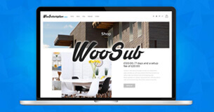WooCommerce Subscription Plugin